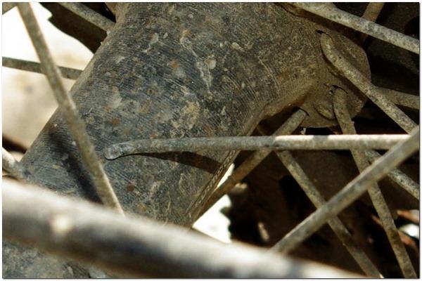 Zamjena žbica na zadnjem kotaču bicikla